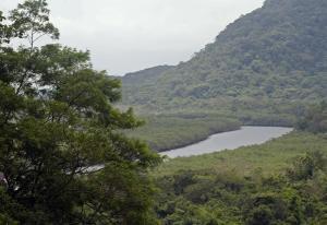 Estação Ecológica Juréia-Itatins. Foto: Reprodução