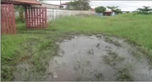 Situação precária da Rua Hum, Jardim Regina em Itanhaém (Foto: Enviada pelo leitor)